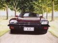 Head On - 1979 Jaguar XJS